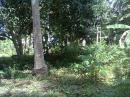 Lot for sale in kinawitnon,Babak